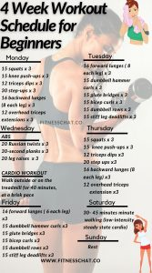 workout plan for beginners